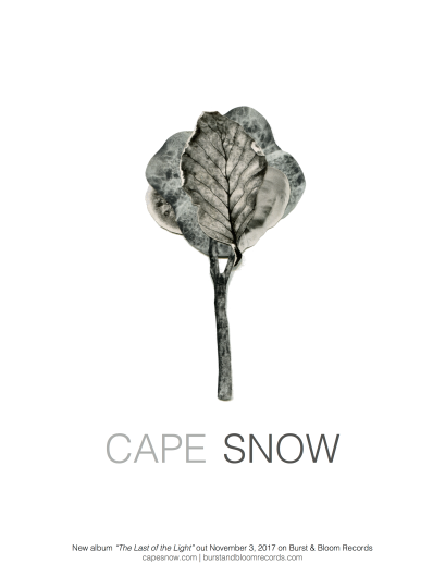 cape snow tour poster